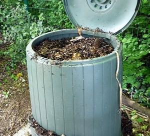 Maintaining a compost bin during winter